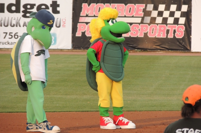 """Snappy D. Turtle (left) was reunited with his """"younger sister"""" Friday."""