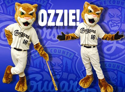 Kane County Cougars mascot Ozzie has a new look this year. (Photo from Cougars social media)