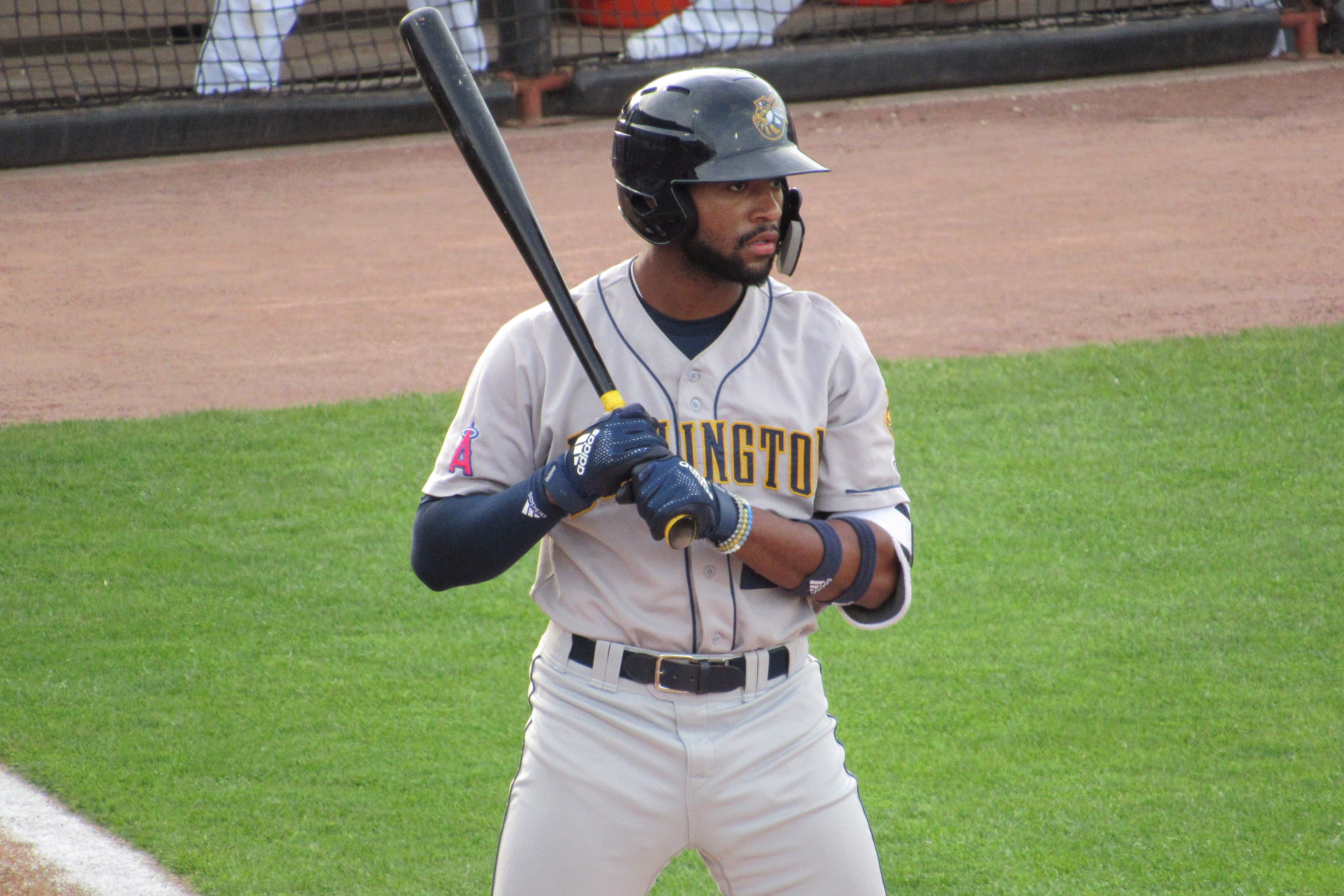 Adell homers in Bees' 3-2 win over Timber Rattlers | The